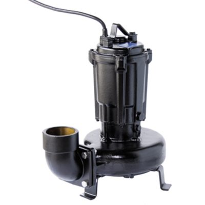 ShinMaywa 80CNL42.2T-2 Pond & Waterfall Pump