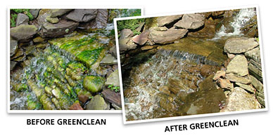 GreenClean Granular Algaecide - Before and After