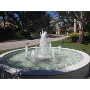 Custom Fountain Rings