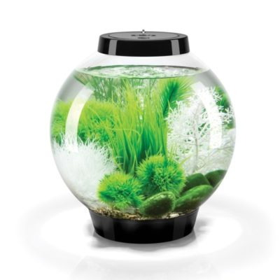 biOrb Classic 15 Aquarium Set - Black - Grass Field