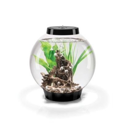 biOrb Classic 15 Aquarium Set - Black - Kelp Forest