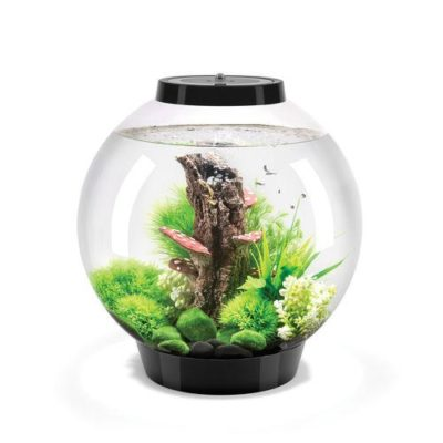 biOrb Classic 30 Aquarium with Multicolor Remote Control - Black