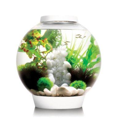 biOrb Classic Aquariums
