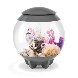 biOrb Halo 15 Aquarium with Multicolor Remote Control - Grey