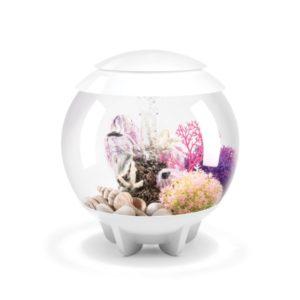 biOrb Halo 15 Aquarium with Multicolor Remote Control - White