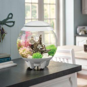 biOrb Halo 15 Aquarium with Multicolor Remote Control - White B