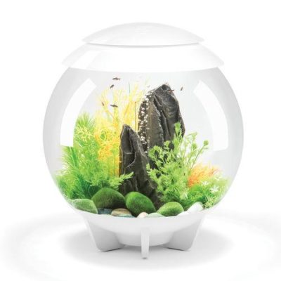 biOrb Halo 30 Aquarium with Multicolor Remote Control - White