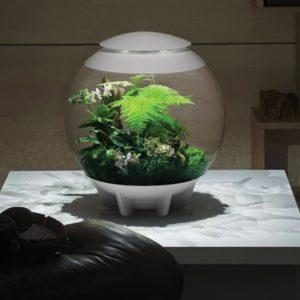 biOrb Air 60 LED Terrarium - White A